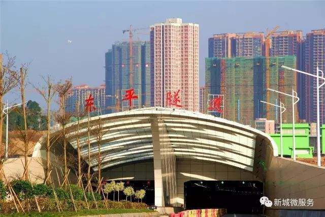 东平隧道绿化工程