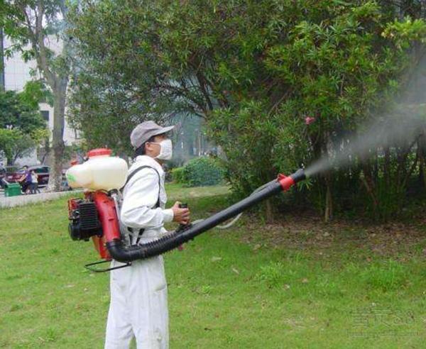 學校、教育業蟲害防治