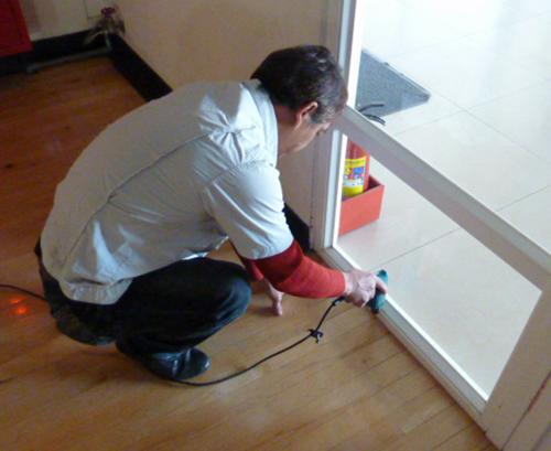專業白蟻防治
