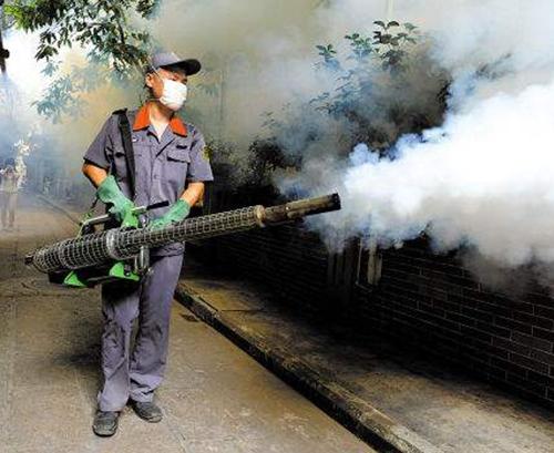 專業蚊子防治